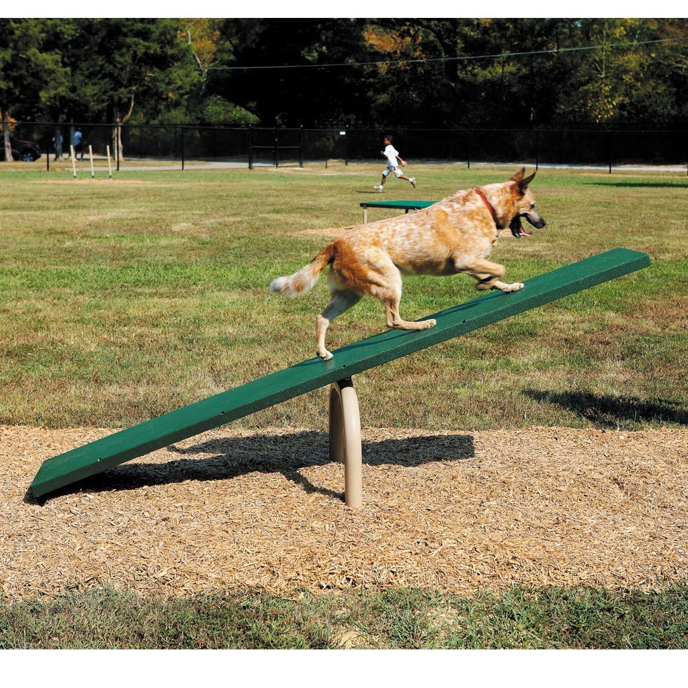 agility dog teeter totter