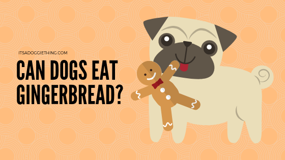 can dogs eat gingerbread