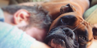 The Top 10 Snuggle Buddy Dog Breeds!