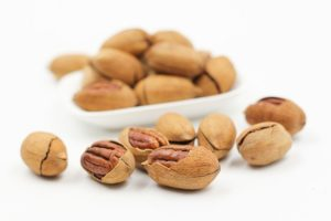 Should I Give My Dog Pecans or Not?