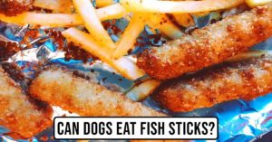 Can Dogs Eat Fish Sticks