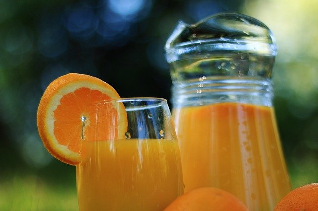 orange juice for dogs