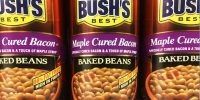 Can Dogs Have Baked Beans