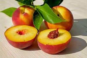 """""""Can Dogs Eat Peaches?…"""" – The Ripe Hipe on Peaches"""