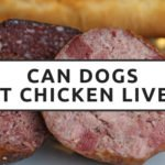 Can Dogs Eat Chicken Liver?