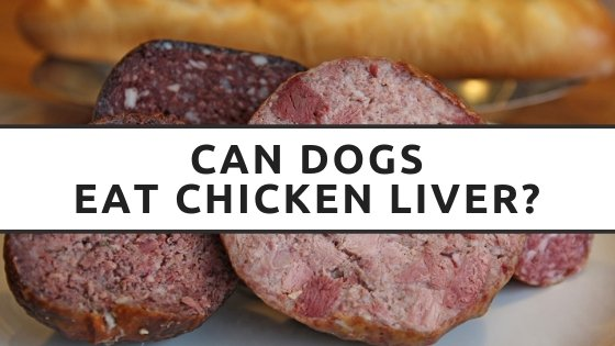 Can Dogs Eat Chicken Liver
