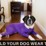 The Shed Defender Onesie for Dogs