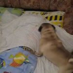Who needs an alarm clock with Jack the pug around?