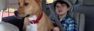 Puppy On The Brink Of Death Breaks the Barrier of Autism in Little Boy