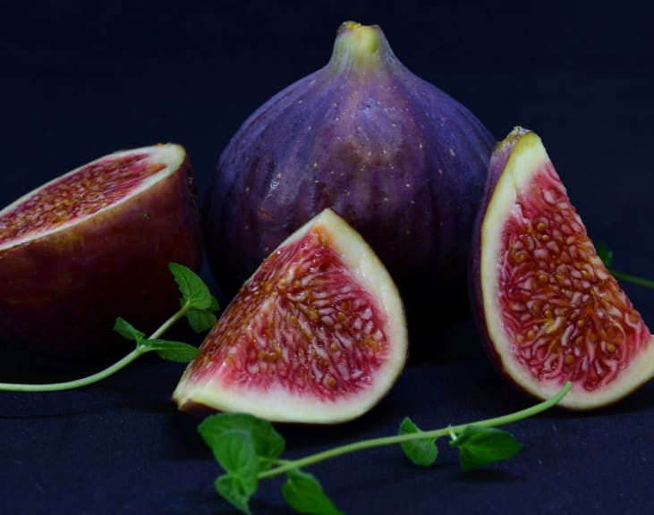 figs for dogs
